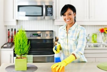 House Cleaning by Klean All USA Inc.