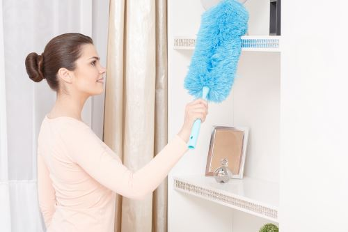 Apartment Cleaning in Lower East Side New York